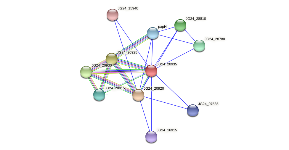 JG24_20935 protein (Klebsiella pneumoniae) - STRING interaction network
