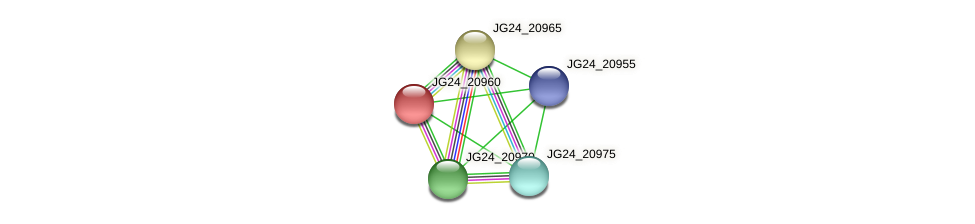JG24_20960 protein (Klebsiella pneumoniae) - STRING interaction network