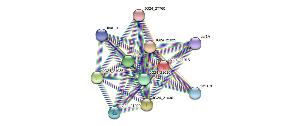 JG24_21015 protein (Klebsiella pneumoniae) - STRING interaction network