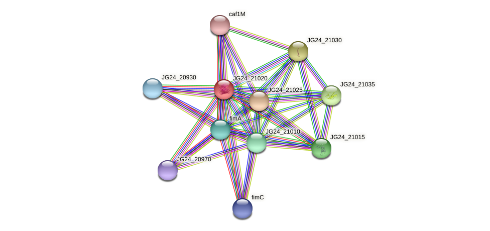 JG24_21020 protein (Klebsiella pneumoniae) - STRING interaction network