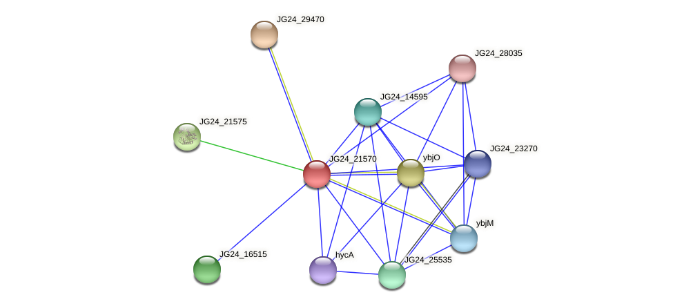 JG24_21570 protein (Klebsiella pneumoniae) - STRING interaction network