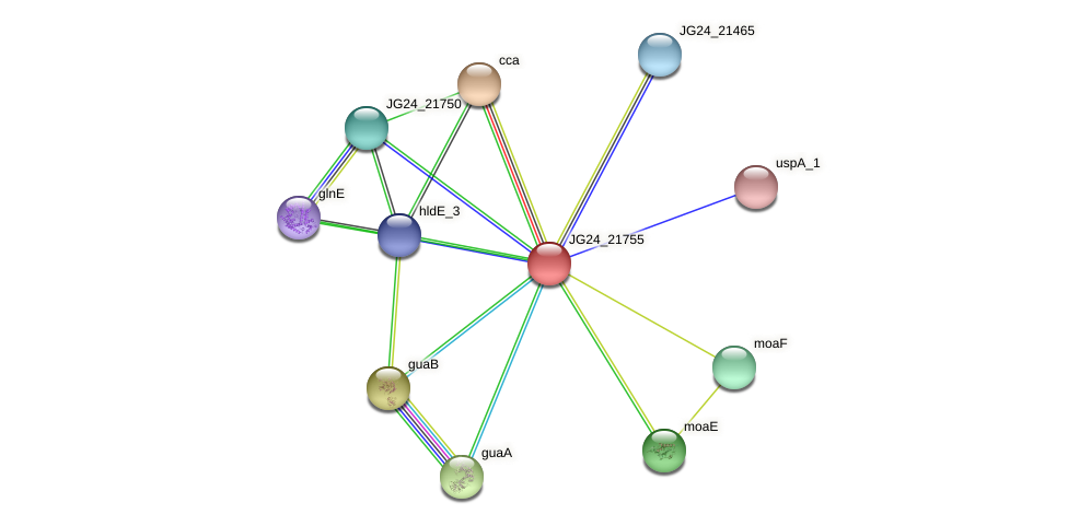 JG24_21755 protein (Klebsiella pneumoniae) - STRING interaction network
