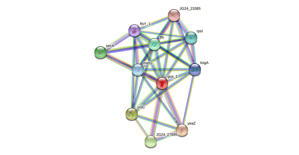 JG24_21830 protein (Klebsiella pneumoniae) - STRING interaction network