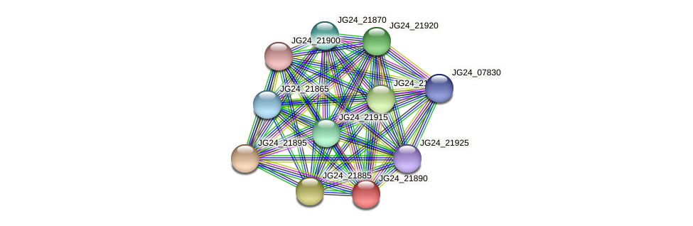 JG24_21890 protein (Klebsiella pneumoniae) - STRING interaction network