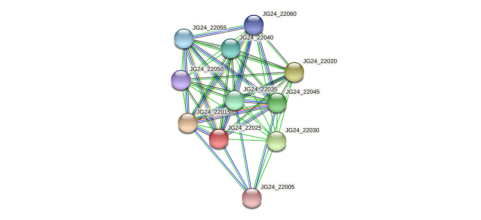 JG24_22025 protein (Klebsiella pneumoniae) - STRING interaction network