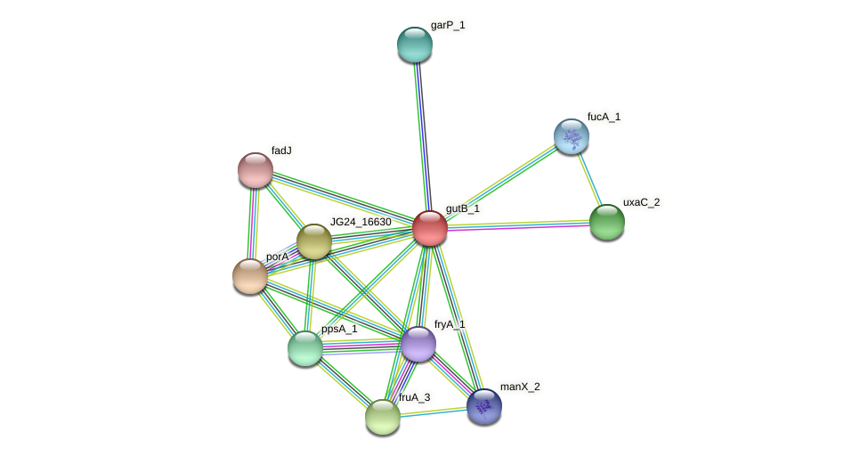 JG24_22995 protein (Klebsiella pneumoniae) - STRING interaction network