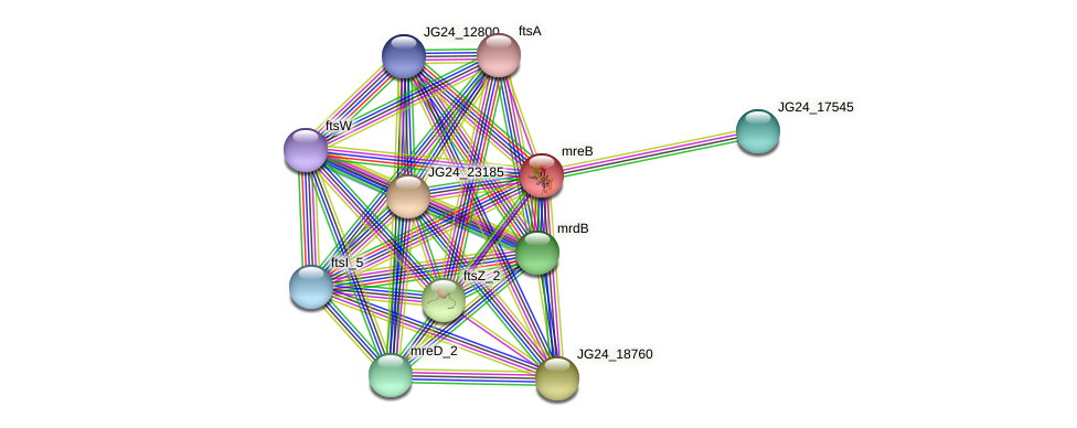 JG24_23190 protein (Klebsiella pneumoniae) - STRING interaction network