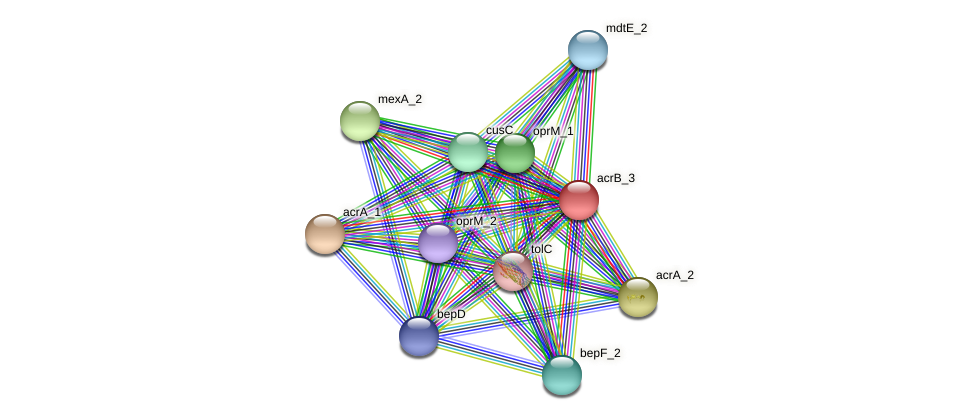 JG24_23265 protein (Klebsiella pneumoniae) - STRING interaction network
