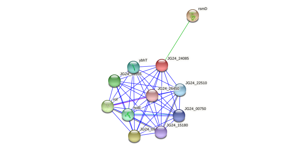 JG24_24085 protein (Klebsiella pneumoniae) - STRING interaction network
