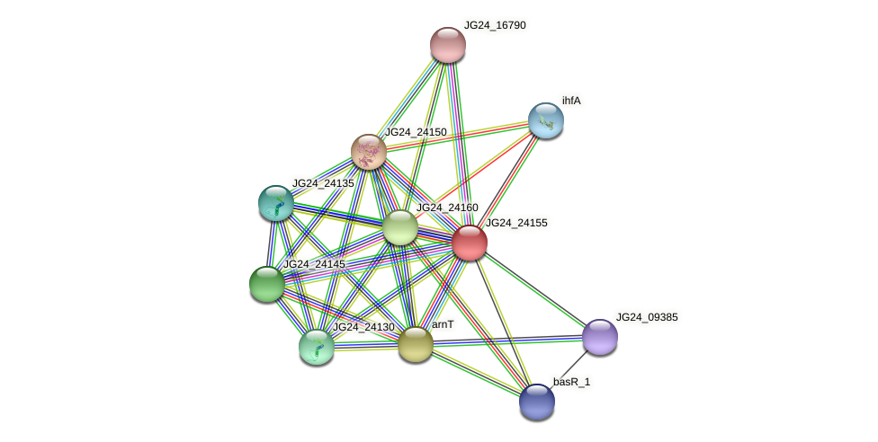 arnC protein (Klebsiella pneumoniae) - STRING interaction network