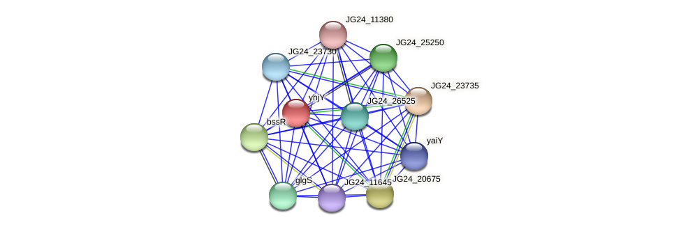 JG24_24475 protein (Klebsiella pneumoniae) - STRING interaction network