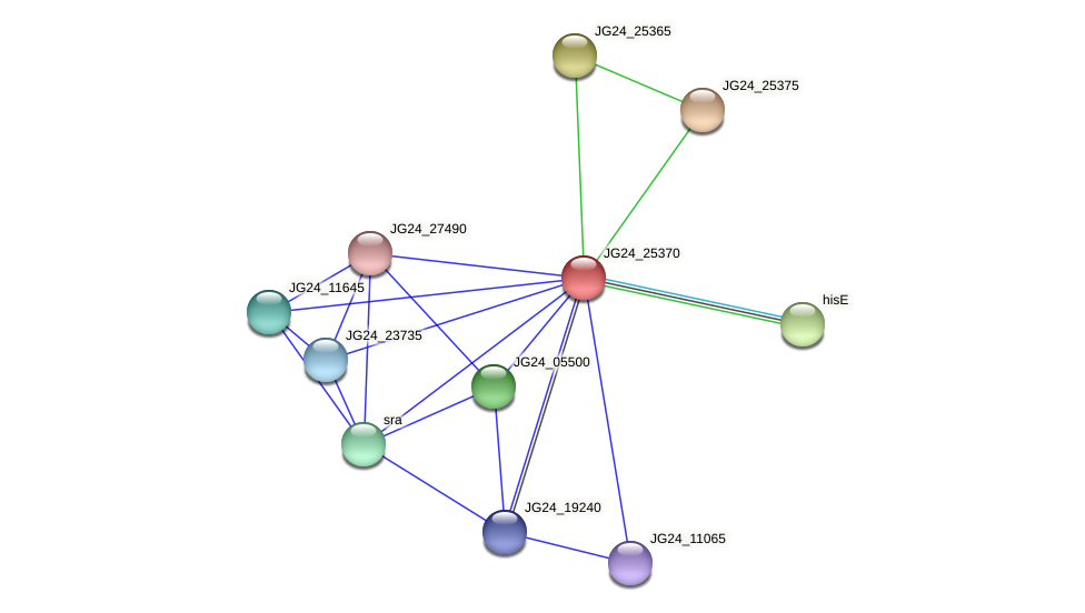 JG24_25370 protein (Klebsiella pneumoniae) - STRING interaction network