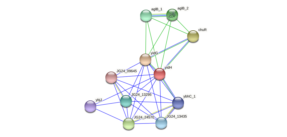 JG24_25415 protein (Klebsiella pneumoniae) - STRING interaction network