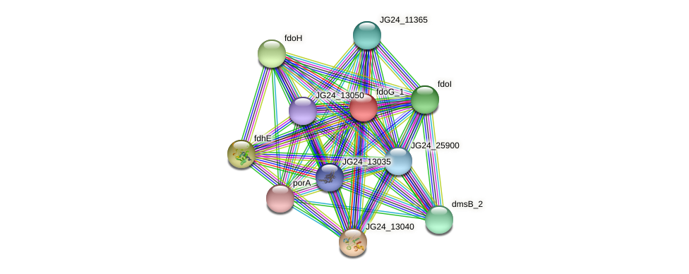 JG24_25895 protein (Klebsiella pneumoniae) - STRING interaction network