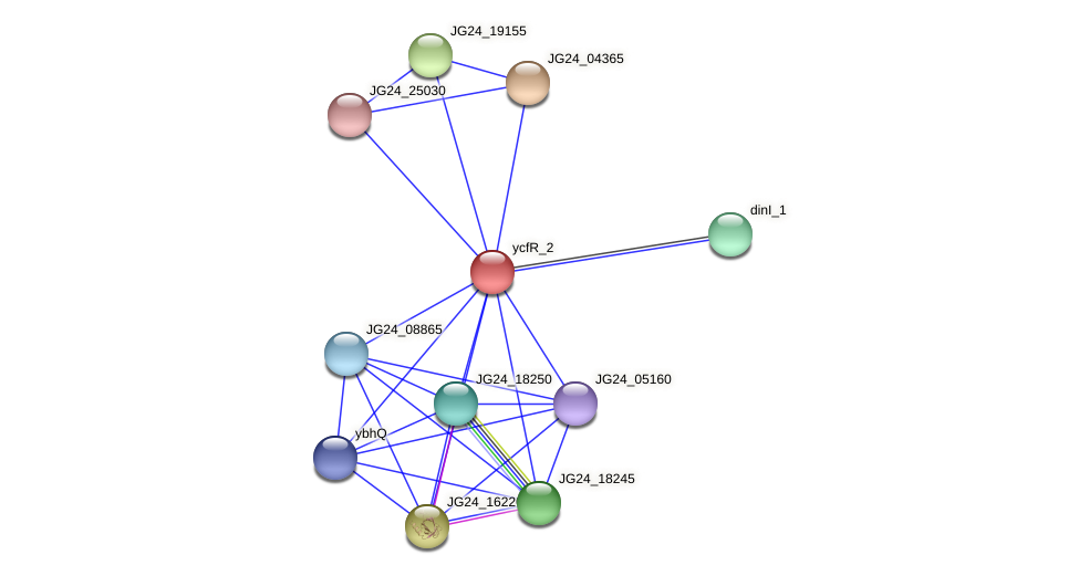JG24_25910 protein (Klebsiella pneumoniae) - STRING interaction network