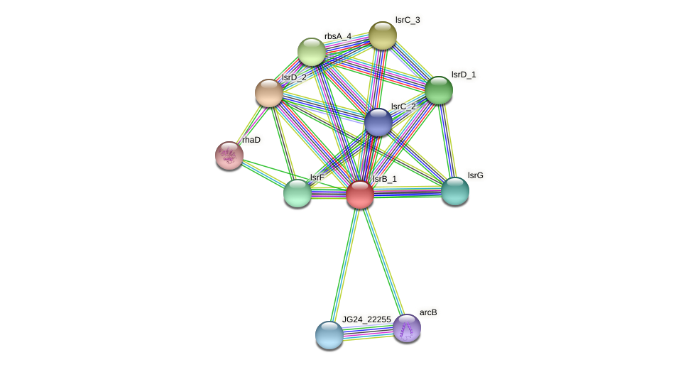 JG24_26025 protein (Klebsiella pneumoniae) - STRING interaction network