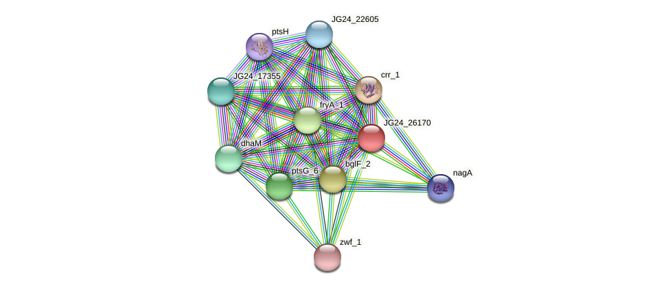 JG24_26170 protein (Klebsiella pneumoniae) - STRING interaction network