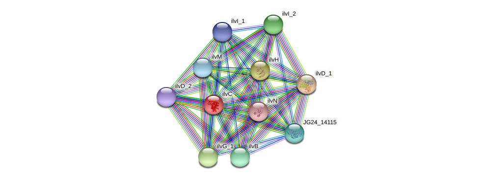 JG24_26345 protein (Klebsiella pneumoniae) - STRING interaction network