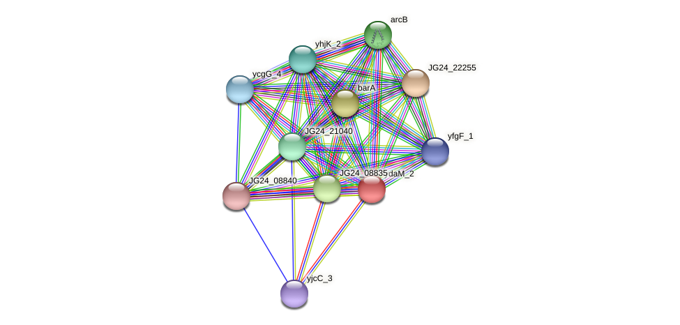 JG24_26840 protein (Klebsiella pneumoniae) - STRING interaction network