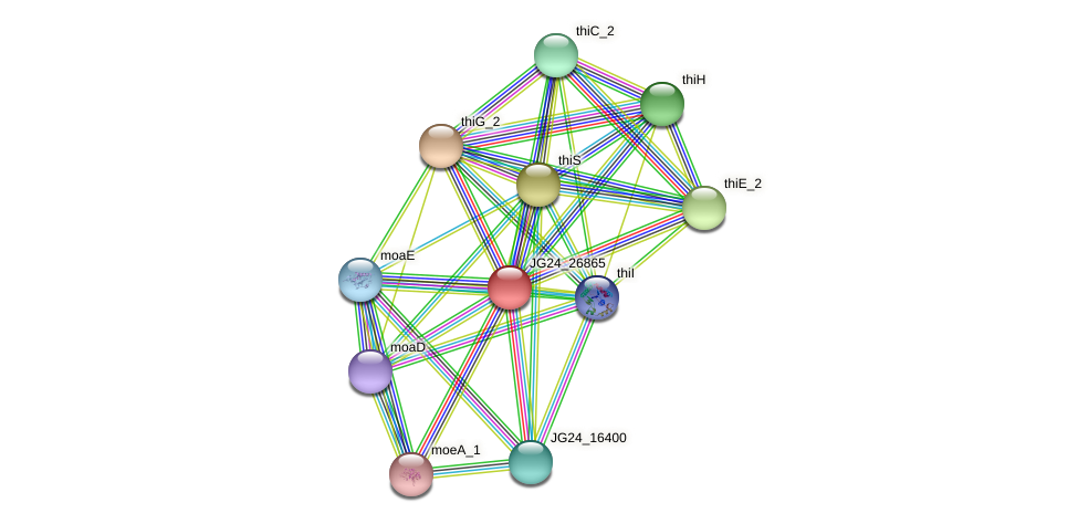 JG24_26865 protein (Klebsiella pneumoniae) - STRING interaction network