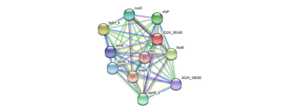 JG24_28140 protein (Klebsiella pneumoniae) - STRING interaction network