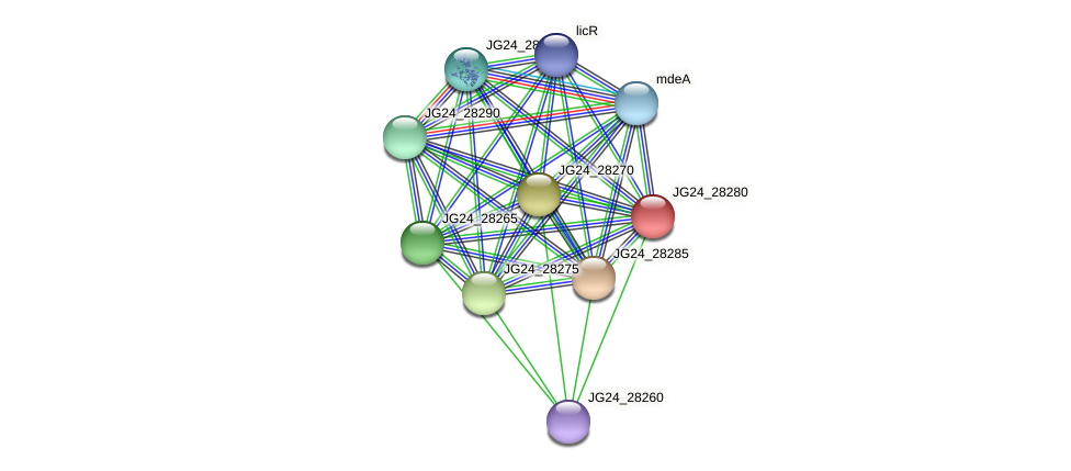 JG24_28280 protein (Klebsiella pneumoniae) - STRING interaction network