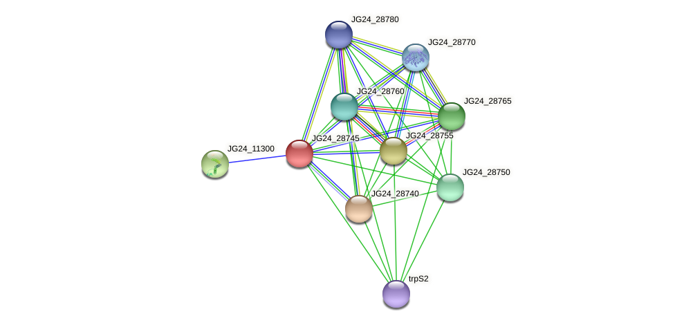 JG24_28745 protein (Klebsiella pneumoniae) - STRING interaction network