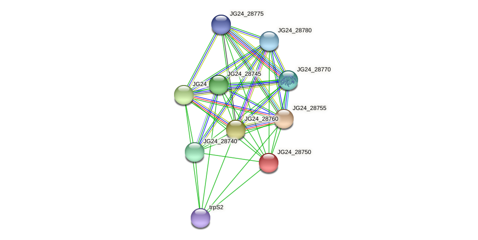 JG24_28750 protein (Klebsiella pneumoniae) - STRING interaction network