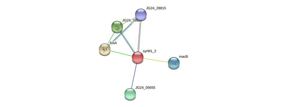 JG24_28825 protein (Klebsiella pneumoniae) - STRING interaction network