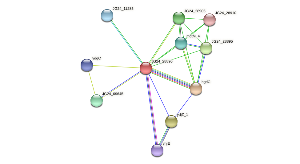 JG24_28890 protein (Klebsiella pneumoniae) - STRING interaction network