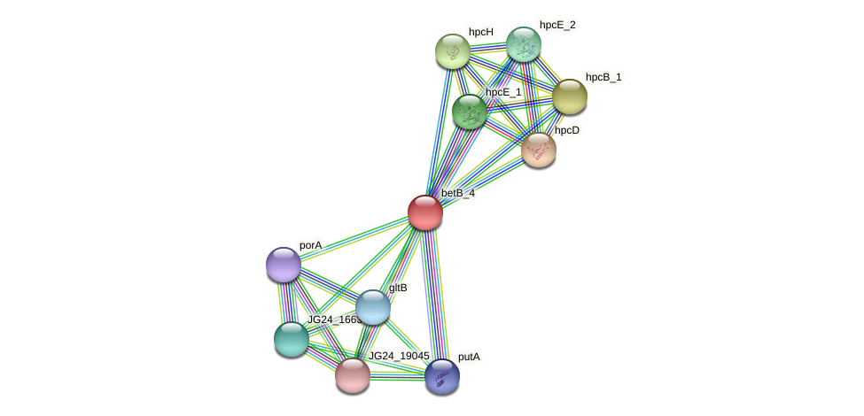 JG24_29035 protein (Klebsiella pneumoniae) - STRING interaction network