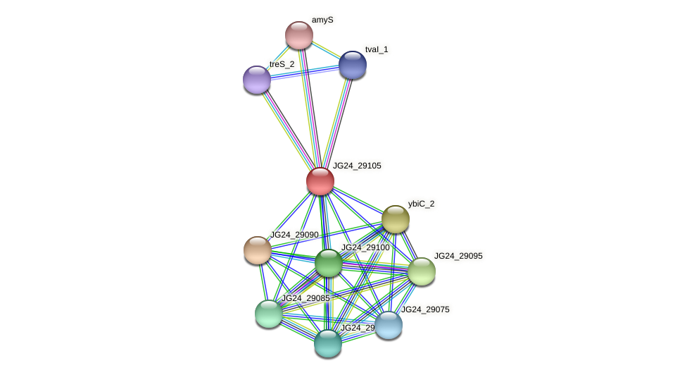 JG24_29105 protein (Klebsiella pneumoniae) - STRING interaction network