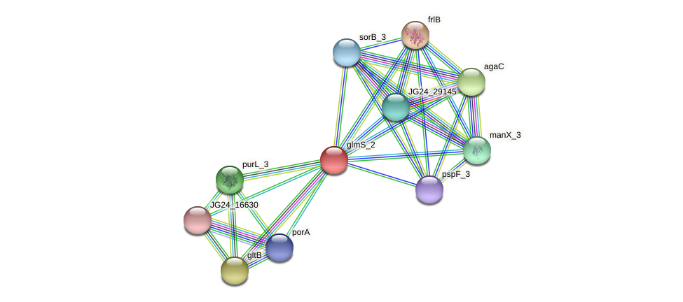 JG24_29150 protein (Klebsiella pneumoniae) - STRING interaction network