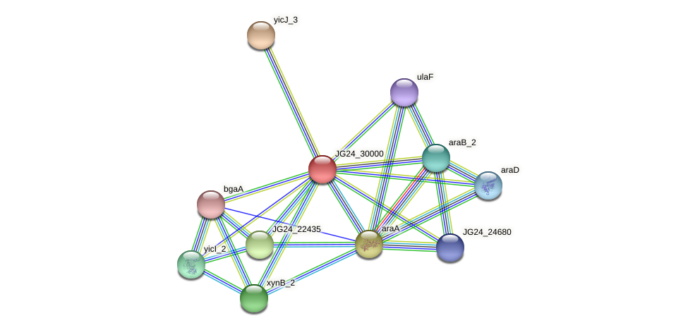 JG24_30000 protein (Klebsiella pneumoniae) - STRING interaction network