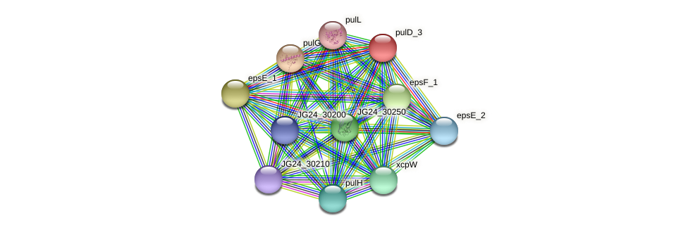 JG24_30245 protein (Klebsiella pneumoniae) - STRING interaction network