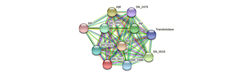 Slit_0017 protein (Sideroxydans lithotrophicus) - STRING interaction network