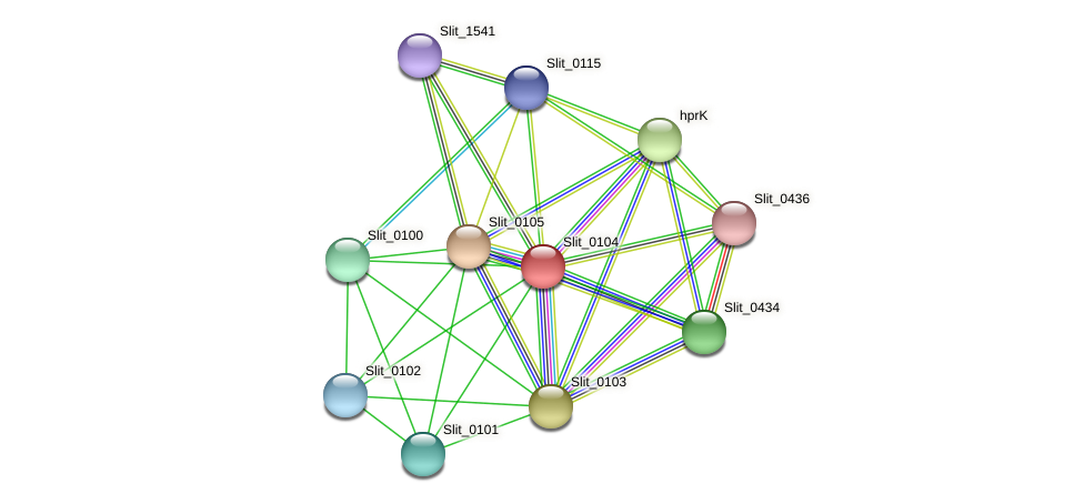 Slit_0104 protein (Sideroxydans lithotrophicus) - STRING interaction network