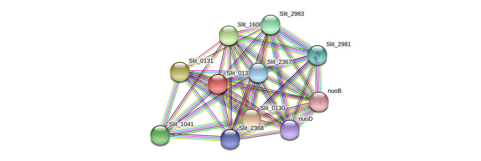 Slit_0132 protein (Sideroxydans lithotrophicus) - STRING interaction network