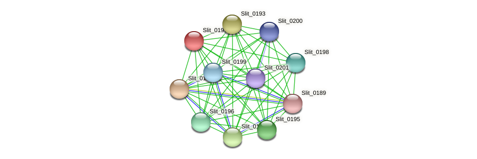 Slit_0197 protein (Sideroxydans lithotrophicus) - STRING interaction network