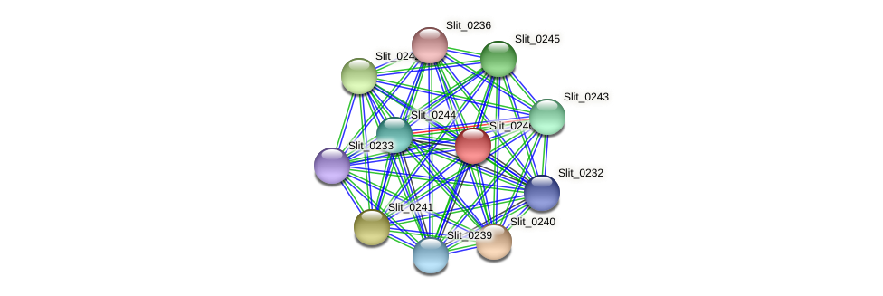 Slit_0246 protein (Sideroxydans lithotrophicus) - STRING interaction network