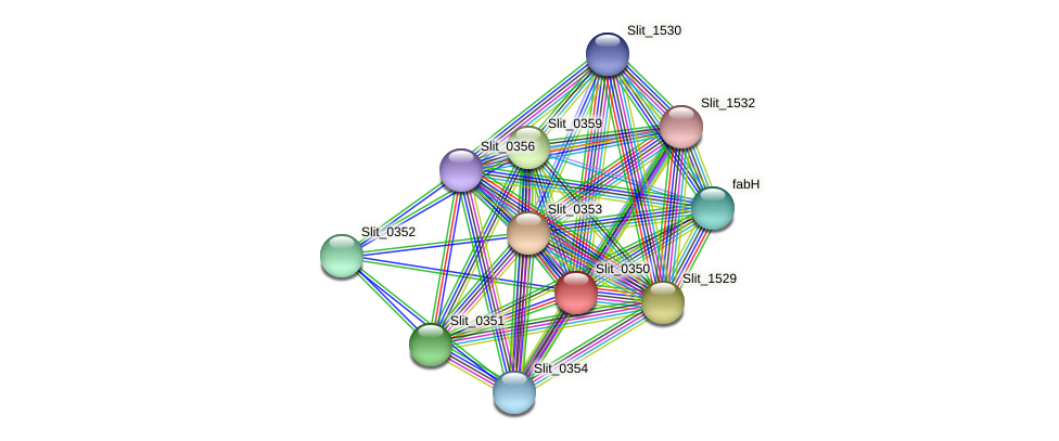 Slit_0350 protein (Sideroxydans lithotrophicus) - STRING interaction network
