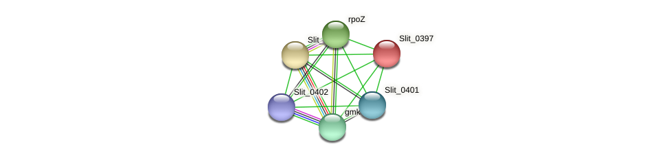 Slit_0397 protein (Sideroxydans lithotrophicus) - STRING interaction network