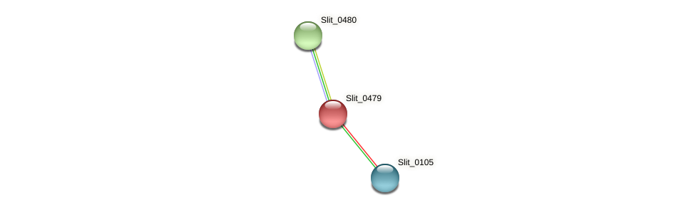 Slit_0479 protein (Sideroxydans lithotrophicus) - STRING interaction network