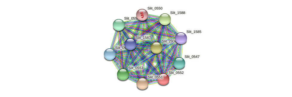 Slit_0552 protein (Sideroxydans lithotrophicus) - STRING interaction network
