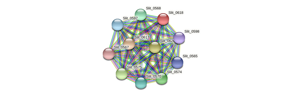 Slit_0618 protein (Sideroxydans lithotrophicus) - STRING interaction network
