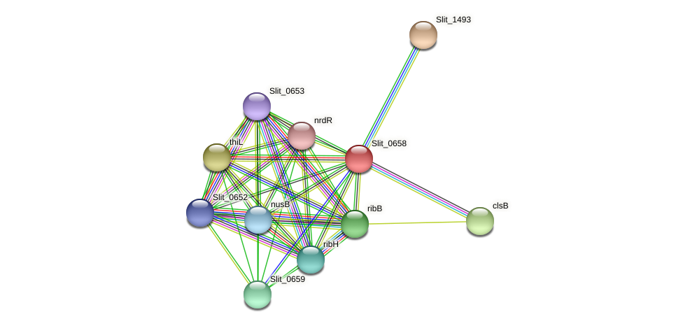 Slit_0658 protein (Sideroxydans lithotrophicus) - STRING interaction network