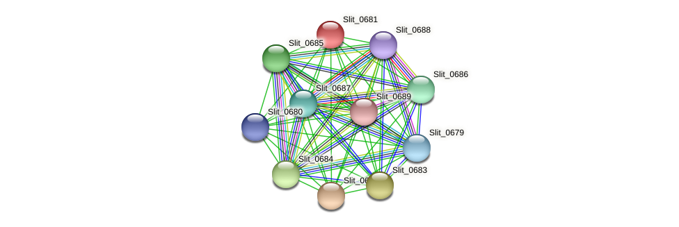 Slit_0681 protein (Sideroxydans lithotrophicus) - STRING interaction network