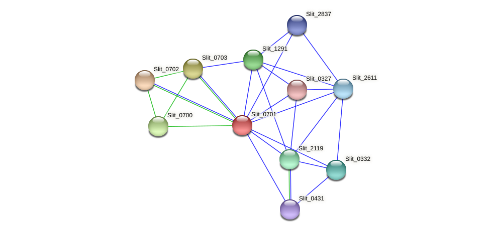 Slit_0701 protein (Sideroxydans lithotrophicus) - STRING interaction network