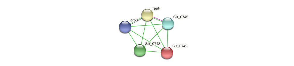 Slit_0749 protein (Sideroxydans lithotrophicus) - STRING interaction network