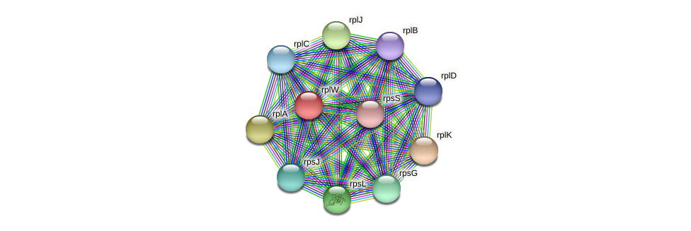 rplW protein (Sideroxydans lithotrophicus) - STRING interaction network